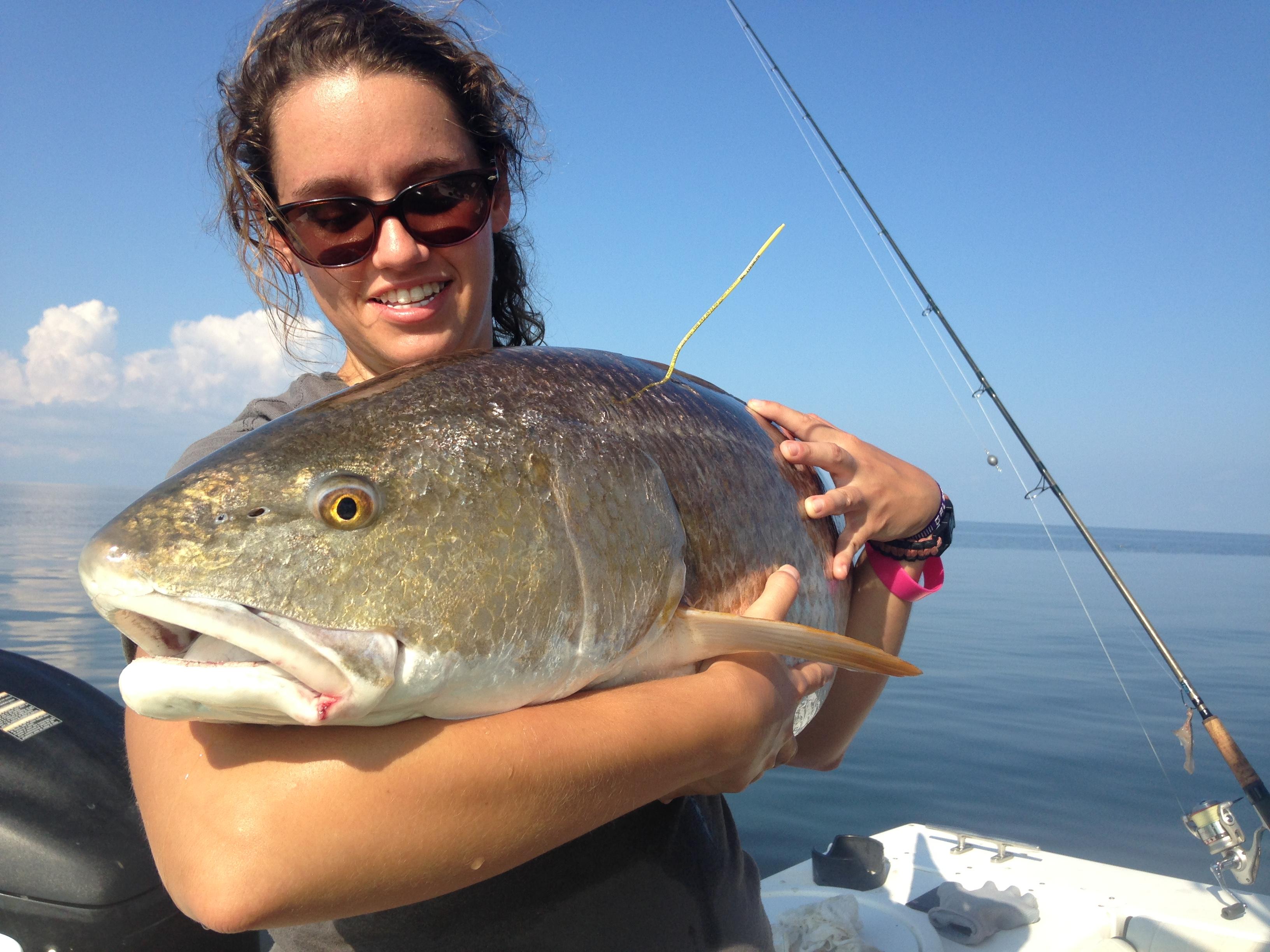 Epic nc red drum fishing fishibx eastern nc fishing guide for Fishing in nc