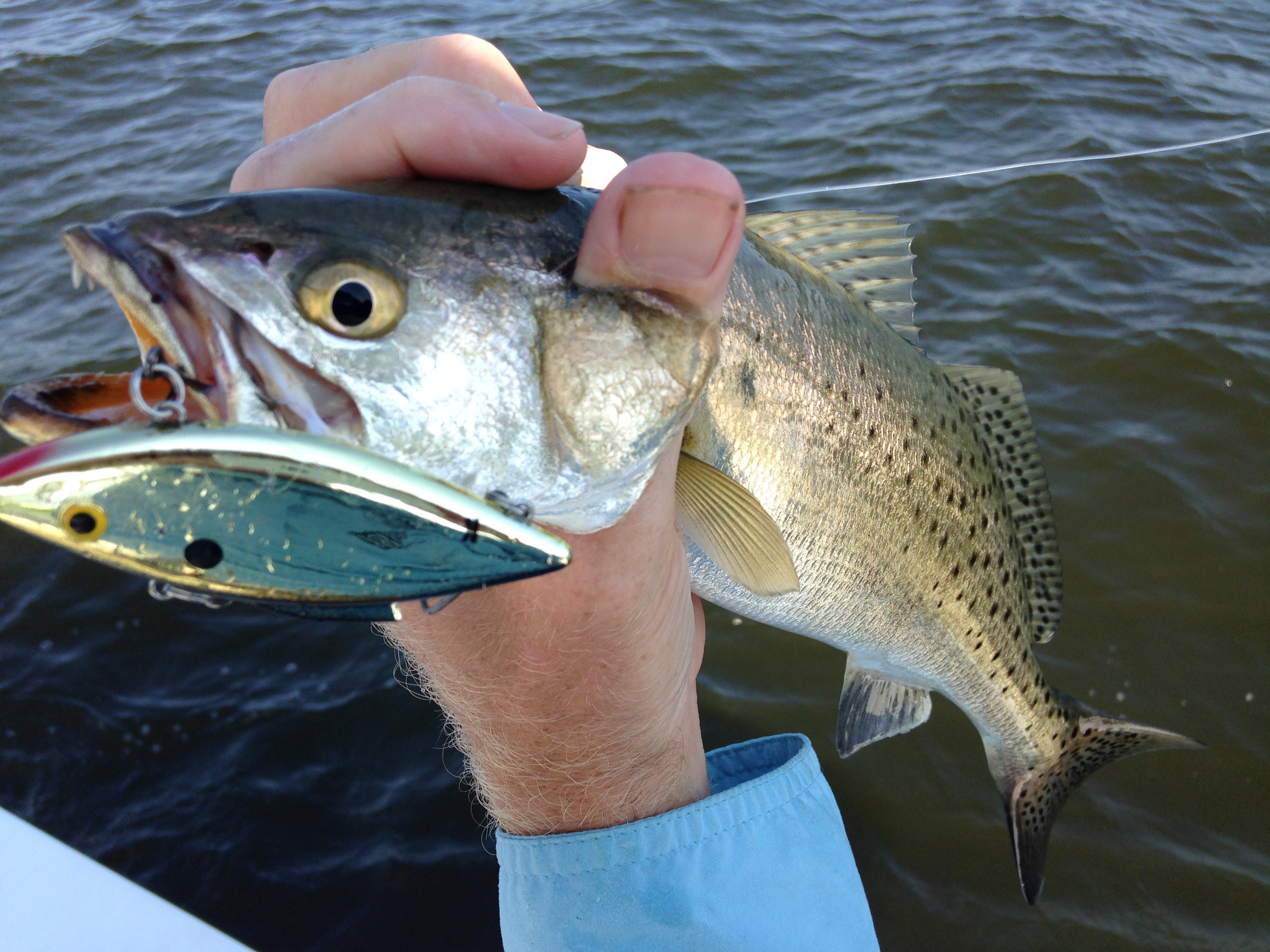 Neuse river inshore slam fishibx eastern nc fishing guide for Northeast saltwater fishing reports