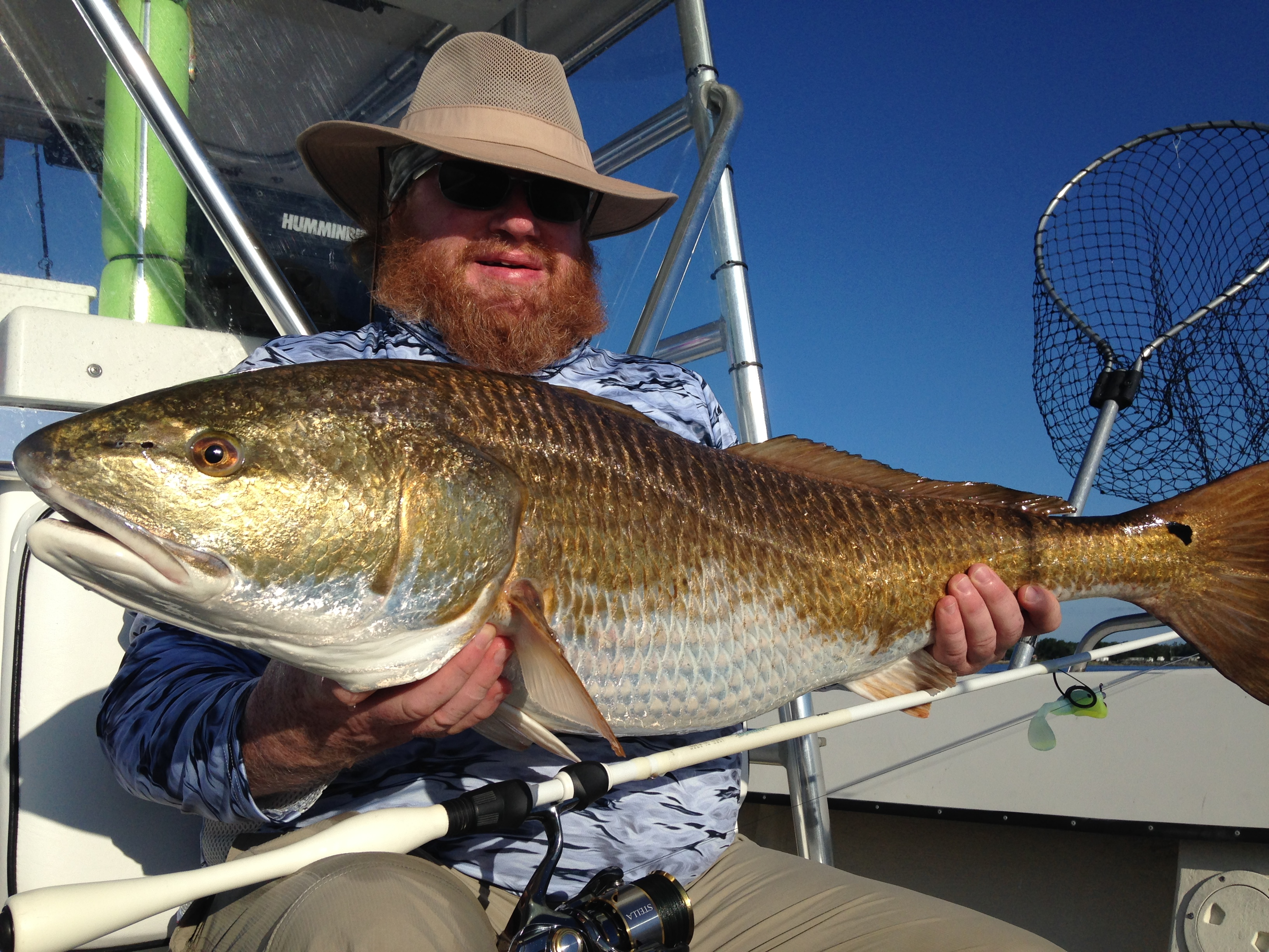 Trophy red drum fishibx eastern nc fishing guide for Red drum fishing