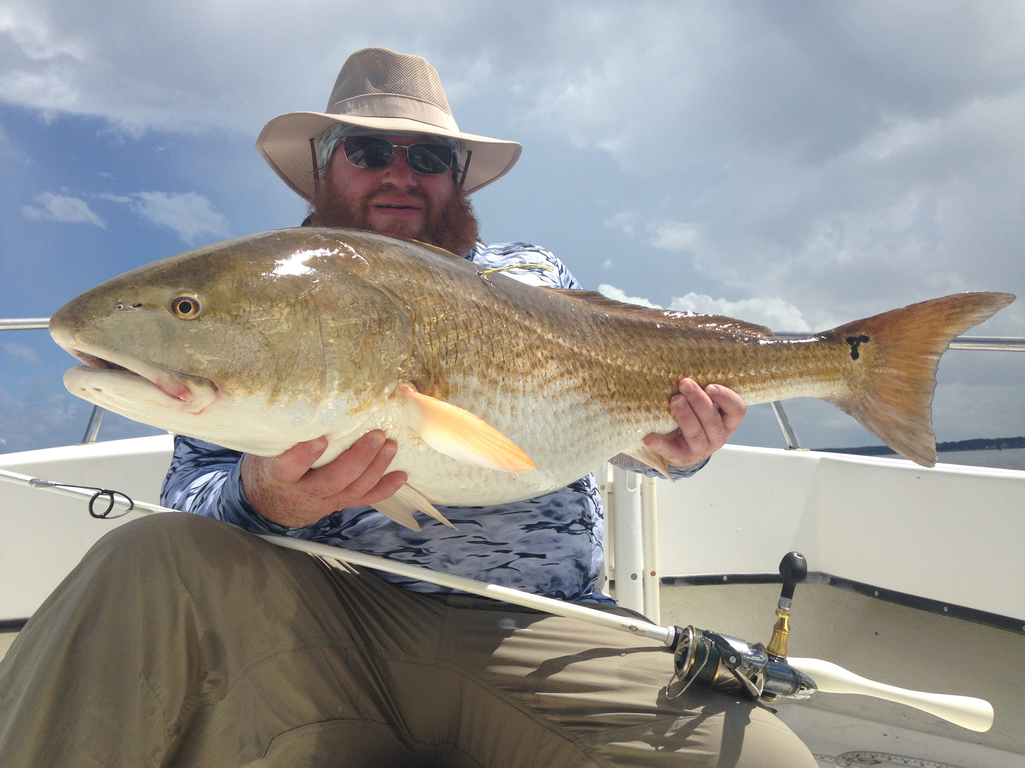 Trophy red drum fishibx eastern nc fishing guide for Northeast saltwater fishing reports