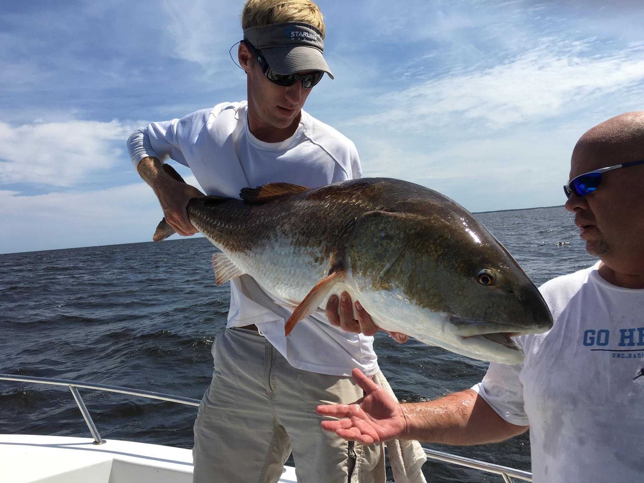 Casting for red drum on the neuse fishibx eastern nc for Northeast saltwater fishing reports