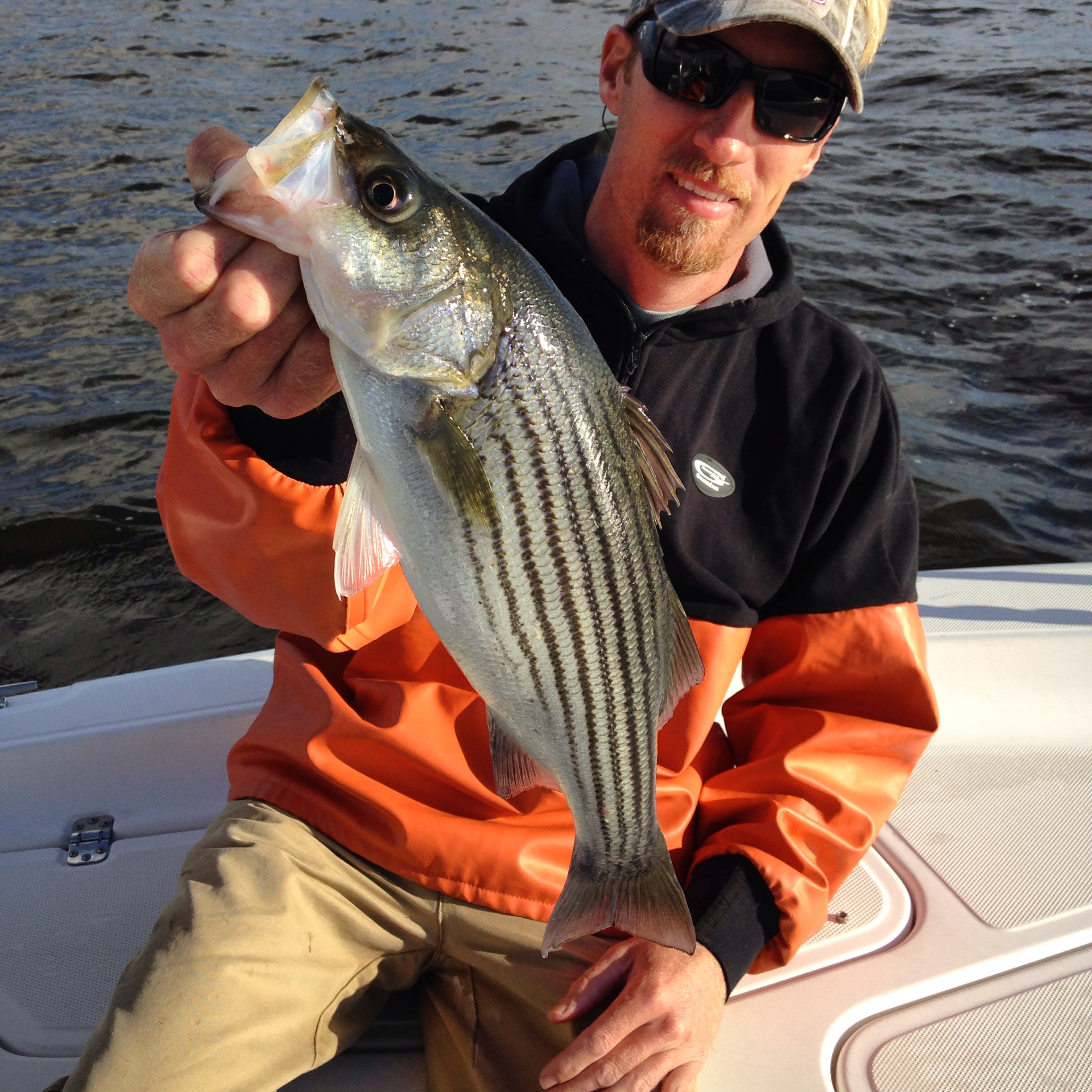 Pamlico river striper fishing fishibx eastern nc fishing for Striper fishing nc