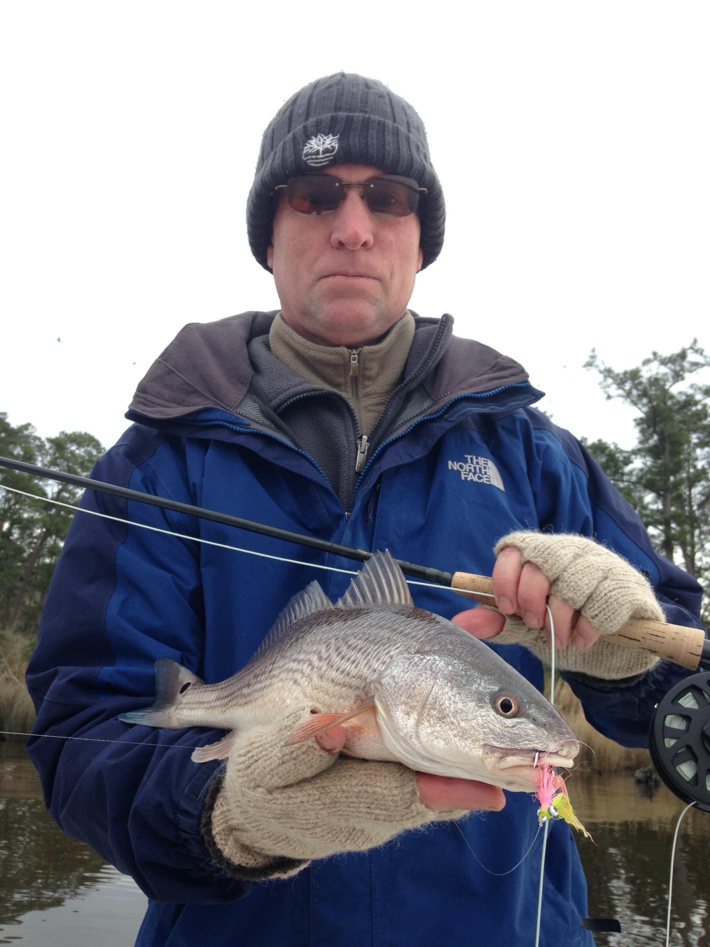 Winter reds stripers fly lines fishibx eastern nc for Northeast saltwater fishing reports