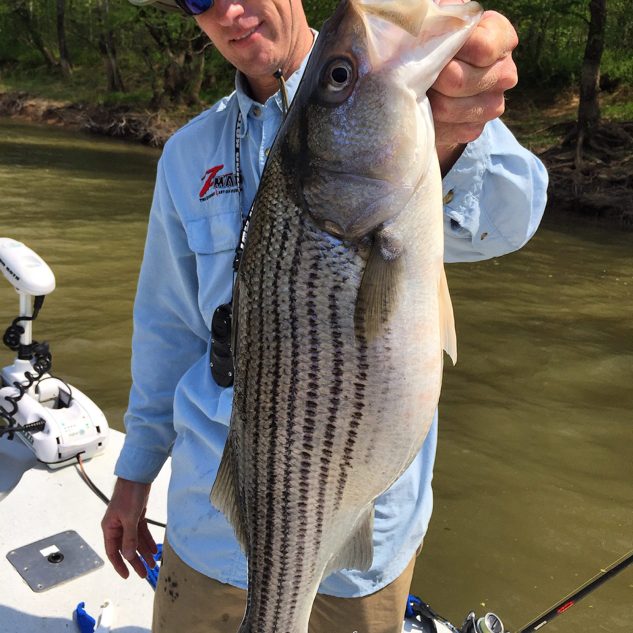 Book now for weldon fishibx eastern nc fishing guide for Nc saltwater fishing report